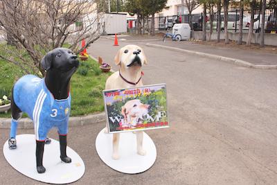 北海道盲導犬協会 イベント